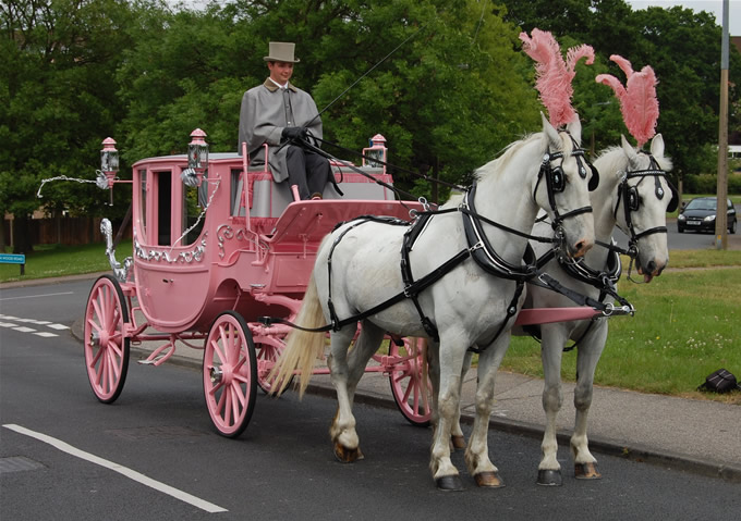 Horse Drawn Carriage Wedding of Horse Drawn Carriages
